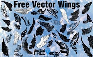 Wings Vector Pack Free Download