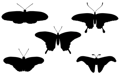 Free Butterfly Silhouettes Vector