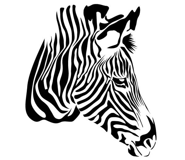 Zebra Print Vector Art