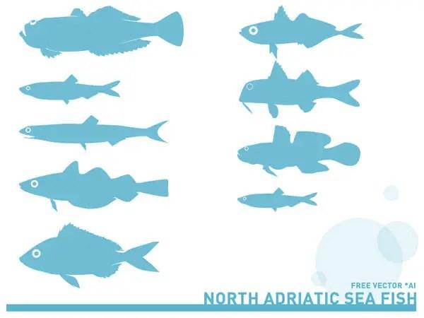 Adriatic Sea Fish Silhouettes Free Vector