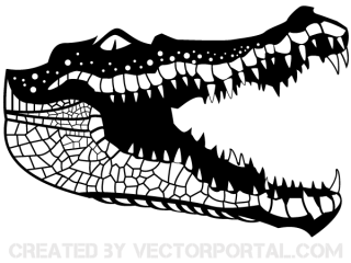 Crocodile Vector Art