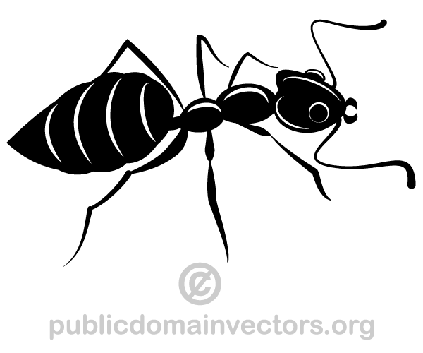 Ants Silhouette Vector