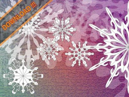 Christmas Ornaments Snowflakes Vector