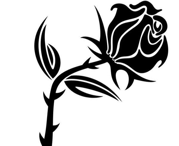 Black Rose Vector Image