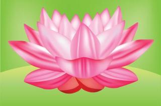 Lotus Flower Vector Graphic Free