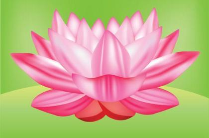 Lotus Flower Vector Graphic Free