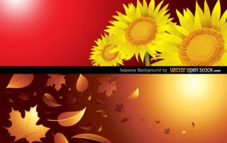 Free Vector Autumn and Summer Vector Background