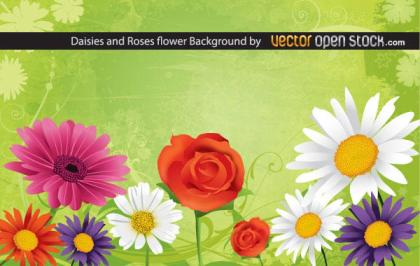 Daisy and Rose Flowers Background Design