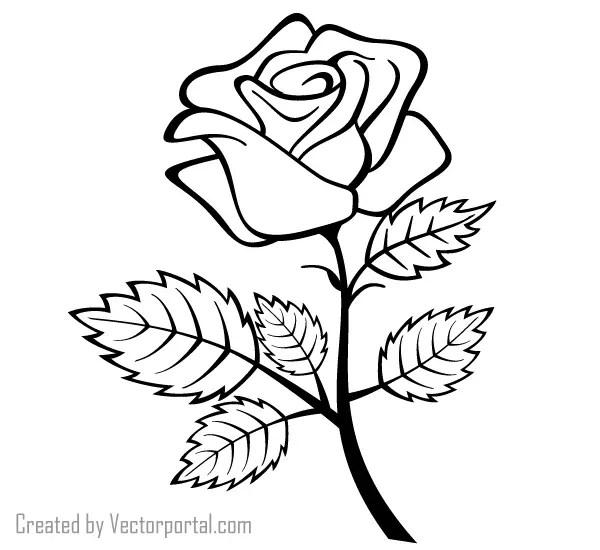 Vector Rose Outline Image