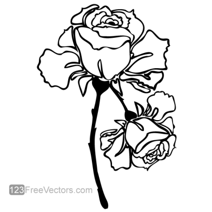 Hand Drawn Rose Vector Image
