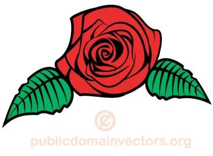 Vector Rose Flower Image