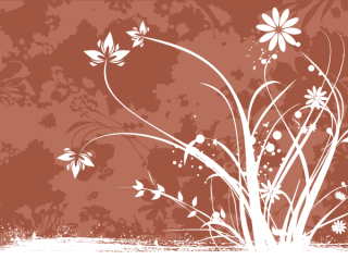 Flower Decoration Brown Background Vector Image