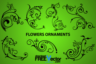 Elegant Flowers Ornaments Design
