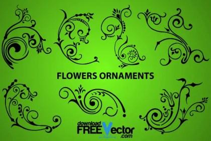 Elegant Flowers Ornaments Design