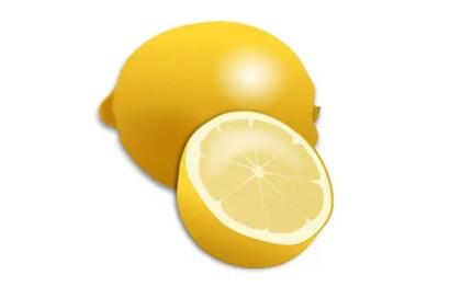 Fresh Lemon and Lemon Slice Realistic Vector Clip Art