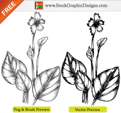 Hand Drawn Sketchy Plant Free Vector Image