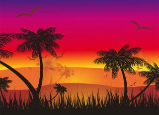 Tropical Sunset Vector