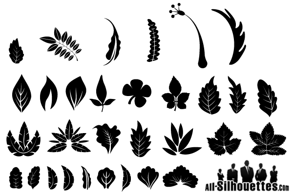 Free Graphics: Vector Leaf Silhouette