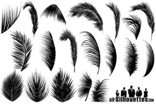 Palm Leaves Vector Free