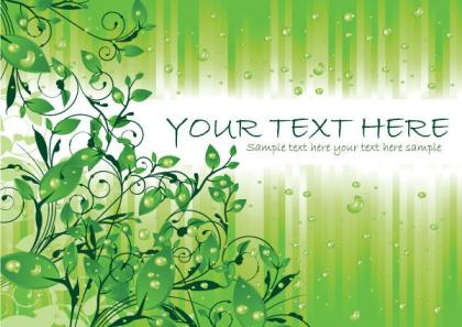 Green Leaves with Water Drops Vector Graphics