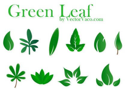 Free Vector Green Leaf