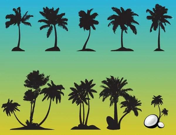 Palm Tree Free Vector Set