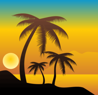 Palm Trees on the Beach Vector