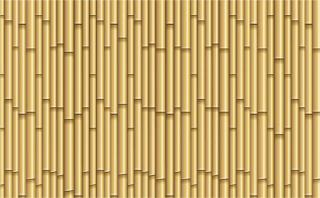 Bamboo Poles Texture Background