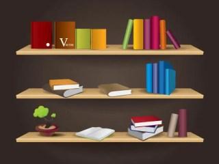 Bookshelf Free Vector