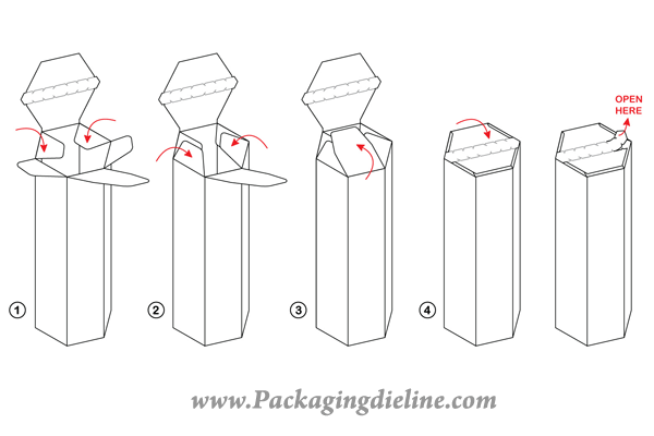 free packaging dieline template vector