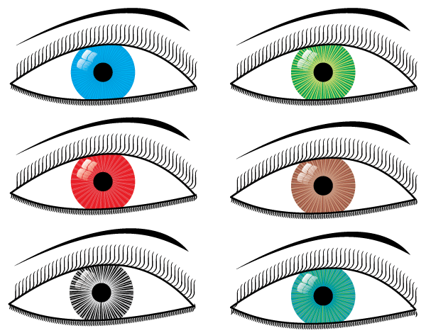 Vector Eyes Illustration Free