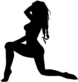 Woman on One Knee Silhouette Vector Image