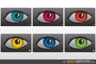 Colorful Eyes Vector