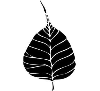 Free Bodhi Leaf Vector Art