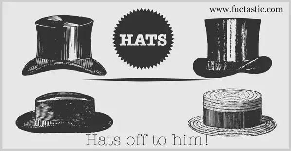 Hat Vector Free
