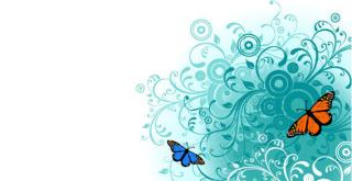 Flowers and Butterfly Free Vector Graphics
