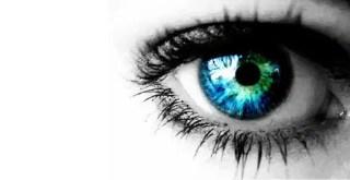Eye Vector Free
