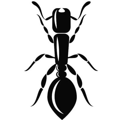 Ant Illustration Free Vector
