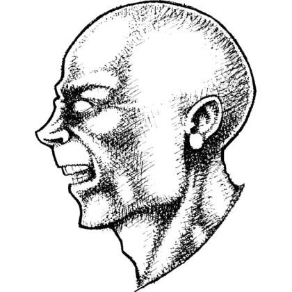 Bald Head Free Illustration Free Vector