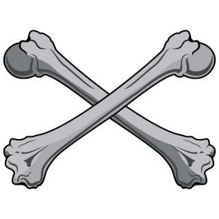 Bones Clip Art Free Vector