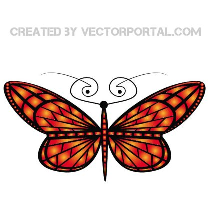 Butterfly Insect Free Vector