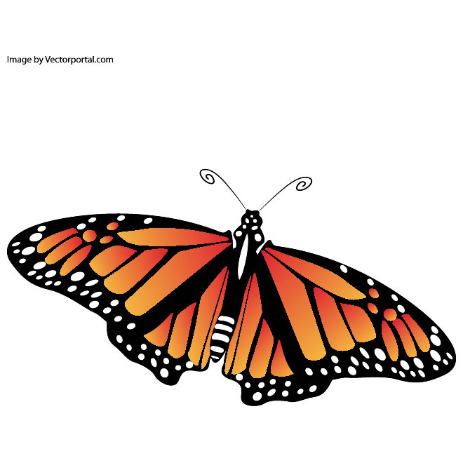Butterfly Sign of Spring Free Vector