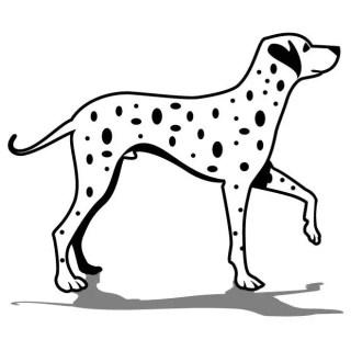 Dalmatian Dog Art Free Vector