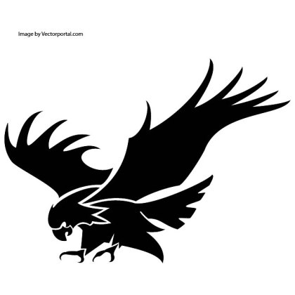 Eagle Attacking Image Free Vector