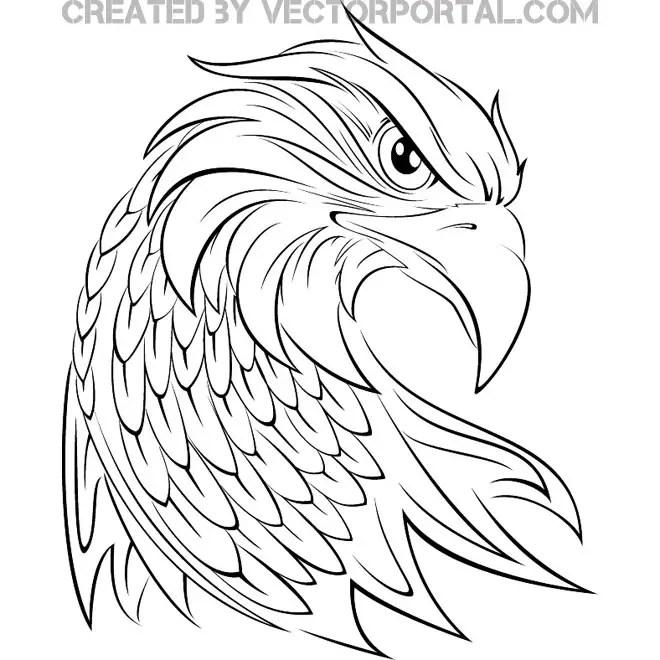Eagle Graphics Free Vector