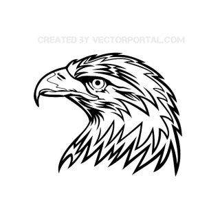 Eagle Head 6 Free Vector