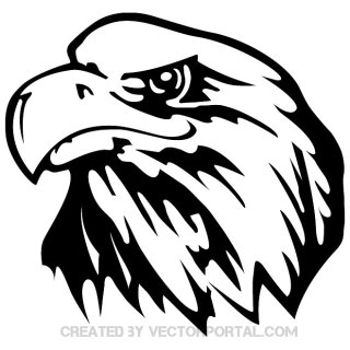 Eagle Image 3 Free Vector