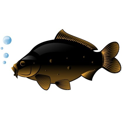 Fish Clip Art Free Vector