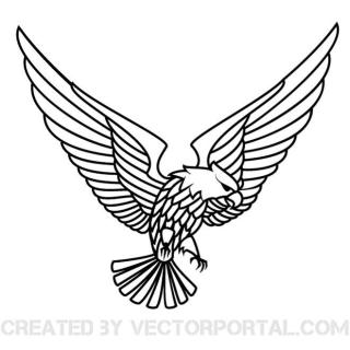 Flying Eagle Graphics Free Vector