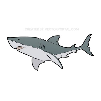 Great White Shark Free Vector
